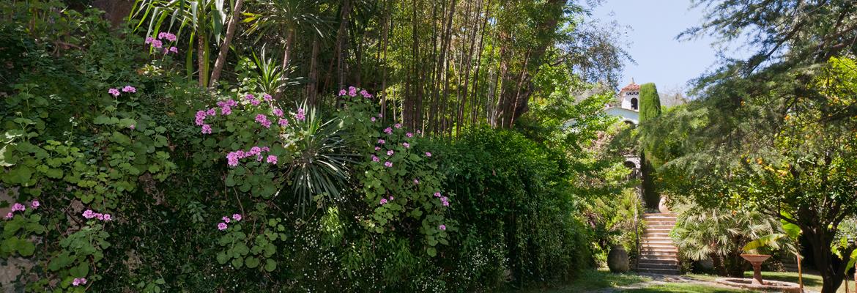 jardin-citronneraie-menton-mazet